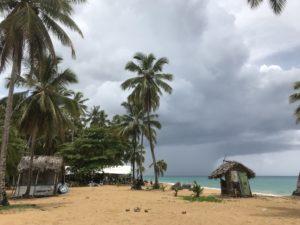 南国ビーチ